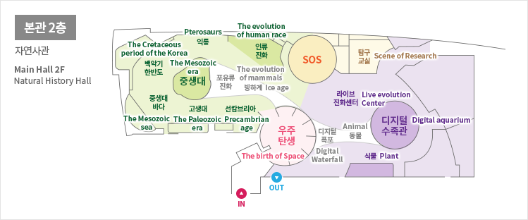본관2층 자연사관 Main Hall 2F Natural History Hall 백악기한반도The Cretaceous period of the korea 중생대The Mesozoic era 포유류진화The evolution of mam mals 빙하계Ice age 인류진화The evolution of human race SOS 탐구교실Scene of Research 중생대바다The Mesozoic sea 고생대The Paleozoic 선캄브리아Precambrian age 우주탄생The brith of sea  IN OUT 디지털폭포Digital Waterfall 라이브진화센터Live evolution Center 동물Animal 디지털수족관Digital aquarium 식물Plant